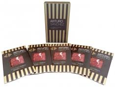 Hand-cut acorn-fed iberico ham grand reserve Arturo Sánchez - premium box
